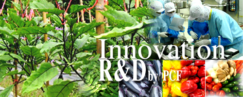 Innovation R&D by PCF